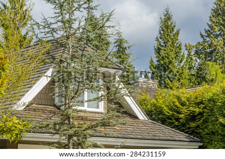 The roof of the house with nice window and pine tree in front over cloudy sky.
