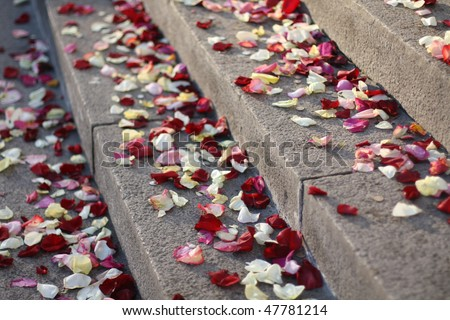 The rose petals on the staircase during wedding - stock photo