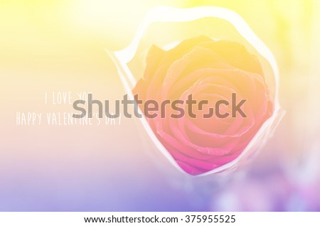 Vector pink blurred background rose flower stock vector for Flowers that represent love