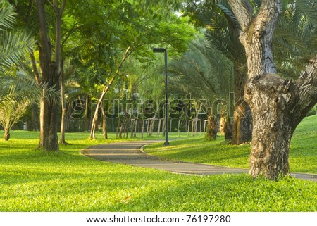 the route walks in public Bangkok park , Thailand ,