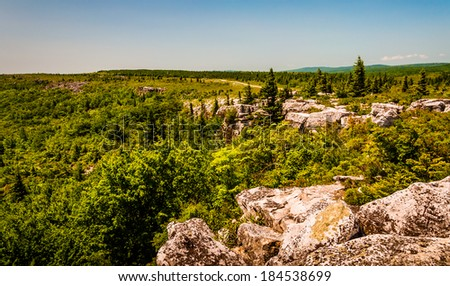 The rugged, rocky terrain of Bear Rocks, in Dolly Sods Wilderness, Monongahela National Forest, West Virginia. - stock photo