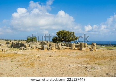 The ruins of the ancient columns surrounded the small tree on the territory of Aphrodite Sanctuary archaeological site, Kouklia, Cyprus. - stock photo