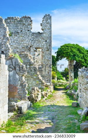The ruins of the narrow street, covered with greenery, Stari Bar, Montenegro.