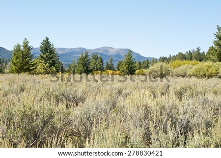 The sagebrush steppe and alpine forest of the Centennial Mountains of Idaho and Montana. - stock photo