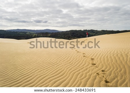 The scenic dunes of Te Paki in the Far North, New Zealand, in front of green forests. One tourist walking on the sand. Cold tones, winter season. Concept of travelling with freedom. in every season - stock photo