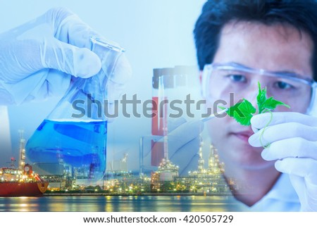 The scientist test or research for decorate or design science concept,science content,science concept,science background,Scientist male working in lab and looking test tube,science education. - stock photo