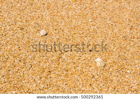 The sea beaches in summer in clear weather