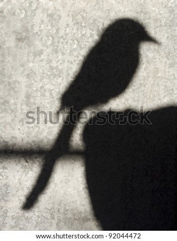 The shadow of a magpie bird against a galvanised grey background. - stock photo
