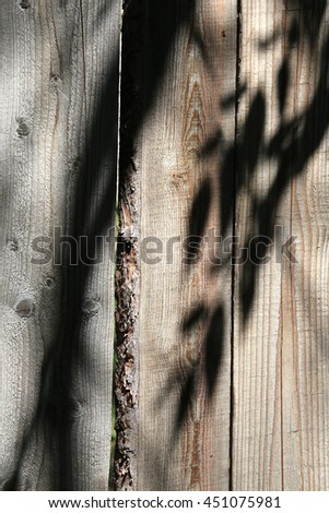 the shadow of leaves on a wooden fence