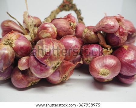 the shallots in white backgrounds