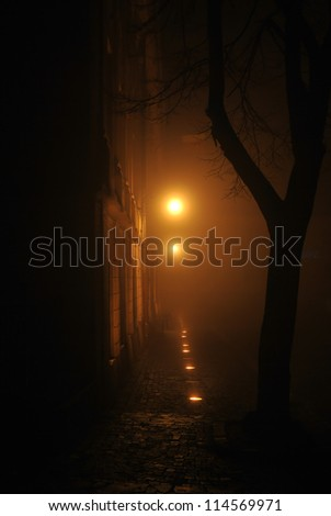 the shape of a tree and some street lights in a dark, foggy night - stock photo