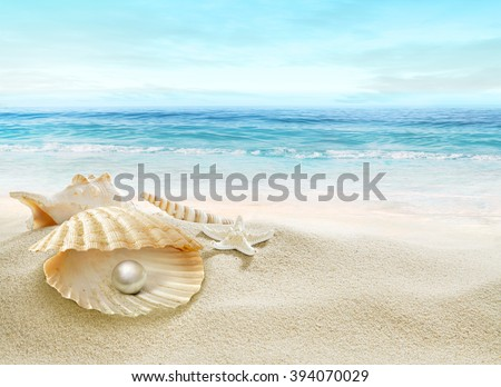 The shell with a pearl. - stock photo
