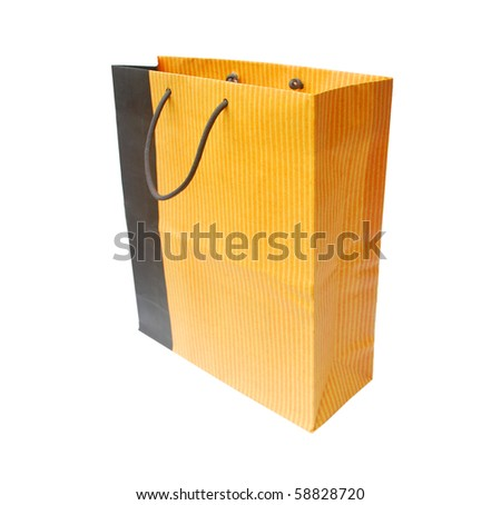 the shopping bag