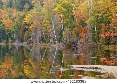 The shores of Red Jack Lake are ablaze with autumnal color, Hiawatha National Forest, Alger County, Michigan