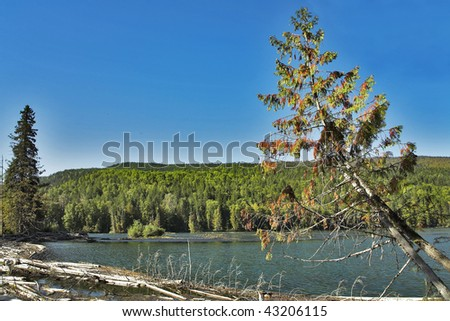 The silent lake surrounded by a wood, popular in fishermen - stock photo