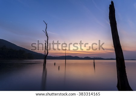 the silhouette of dead trees in the lake with beautiful twilight sky - stock photo