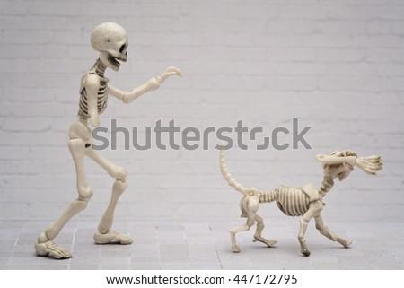 The skeleton chasing the dog - stock photo