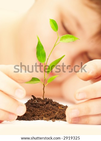 The sleeping boy near a growing plant. - stock photo
