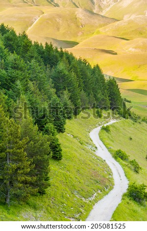 The slope of the hill with the road and trees in Umbria, Italy - stock photo