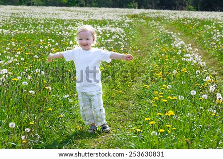 the small child the boy plays on a summer meadow - stock photo