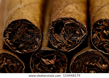 The small cigars put together. small depth of sharpness - stock photo