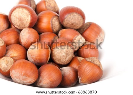 The small group of wood nuts lies on a plate on a white background. Focus in the shot center - stock photo