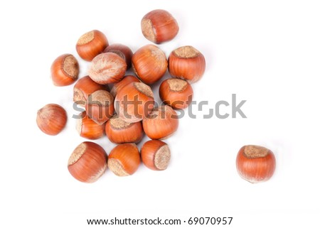 The small group of wood nuts lies on the white background, one nut lies separately from a small group, a shot horizontal, focus in the image center. - stock photo