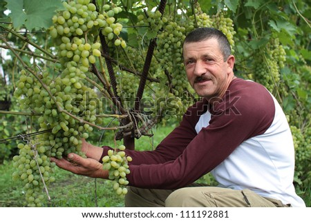 The smiling  wine-grower shows grapes cluster - stock photo