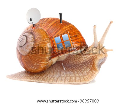 The snail with his mobil home. Easy housing metaphor. Real estate business concept. - stock photo