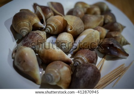 The snails Seafood Thailand