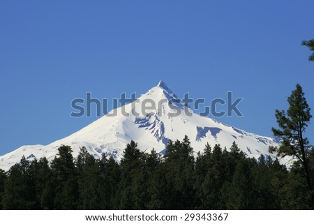 The snow covered central Oregon Cascade volcano Mount Jefferson rises above a pine forest - stock photo