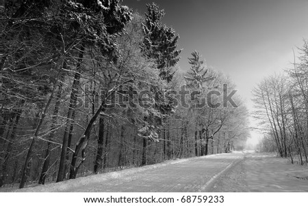 The snowy road - stock photo