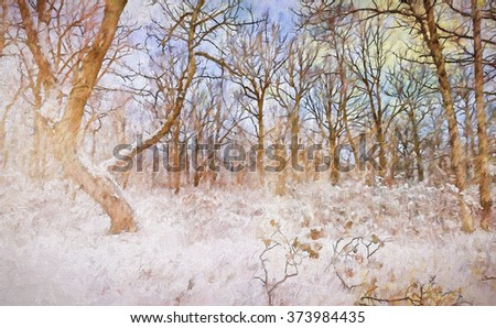 The snowy winter woods of the Poconos of Pennsylvania transformed into a painting - stock photo