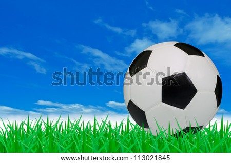 The soccer ball on the green grass field with blue sky