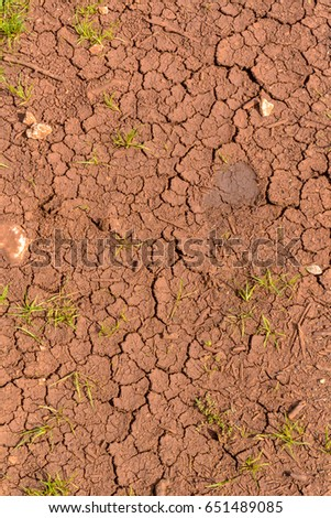 Red clay soil stock images royalty free images vectors the soil with a high content of red clay dried up and cracked from prolonged heat sciox Images