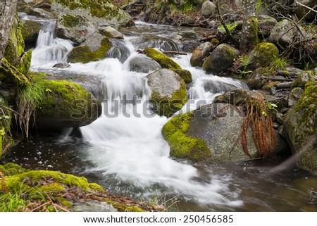 The Solana Toro stream in the Iruelas Valley. Sierra de Gredos. Avila. Castilla Leon. Spain. Europe. - stock photo