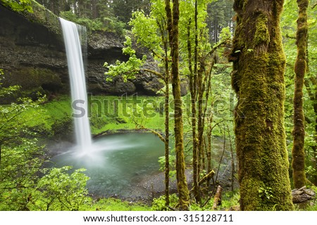 The South Falls in the Silver Falls State Park, Oregon, USA. - stock photo