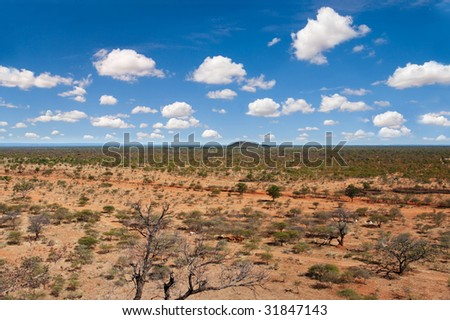 the Southern African semiarid bush, South Africa, Botswana, horizon in the middle chose sky or land - stock photo
