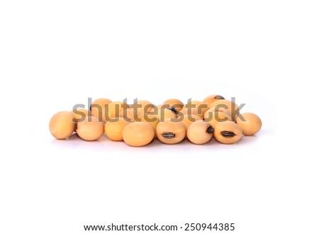 the soya beans - stock photo