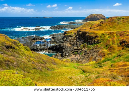 The spectacular landscape of Nobbies overlook Seal Rocks. Grant Point, western tip of Phillip Island, Victoria, Australia. - stock photo