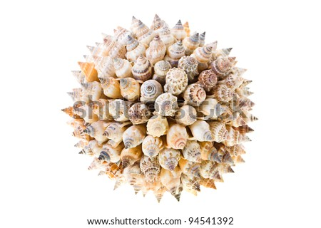 The sphere made of a great number of small cockleshells. It is isolated on a white background. Small depth of sharpness - stock photo