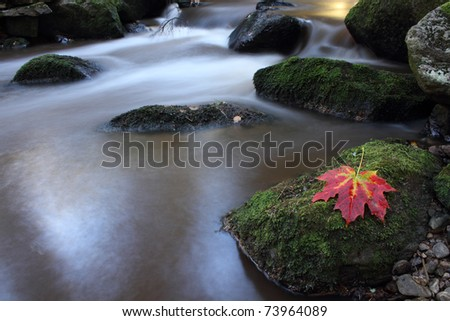 The spring flowing in the mountains. - stock photo