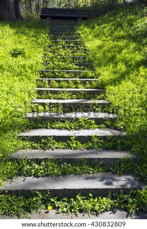 The staircase leading up to a bench - Green Spring in Denmark - stock photo