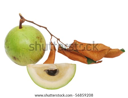 the star-apple fruit - stock photo