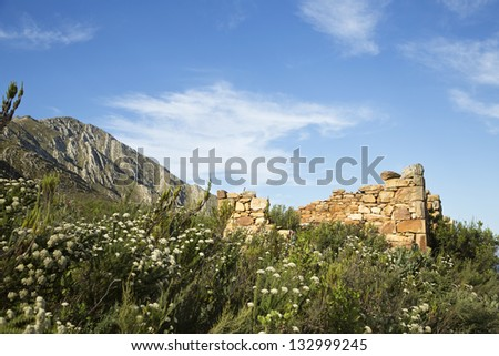 The stone wall remains of an old farm house - stock photo