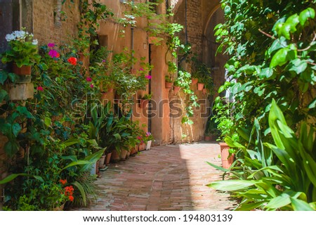 The streets of the old Italian city of Siena - stock photo