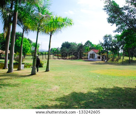 The summer park's lawn - stock photo