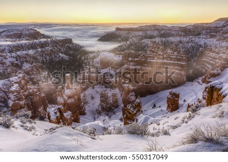 The sun about to rise out of the a fog bank over the snow shrouded hoodoos  in Bryce Canyon National Park, Utah