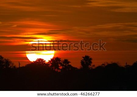 The sun rises in the Florida morning - stock photo