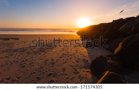 The sun setting over the jetty in Florence, Oregon with a bird cruising the sky. - stock photo